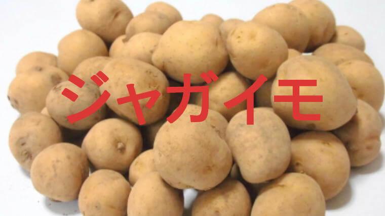 ジャガイモのアイキャッチ画像です
