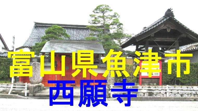 西願寺のアイキャッチ画像です