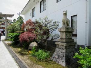越中稲荷神社 狐
