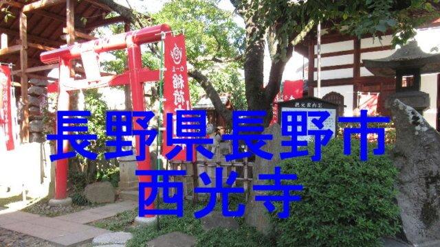 西光寺アイキャッチ画像