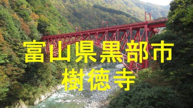 樹徳寺アイキャッチ画像